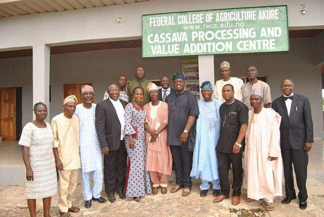 Pictures speak at the recently visit of Federal College of Agriculture, Akure, Board Members to the Institute's new facilities